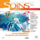 Soins Cadres 105